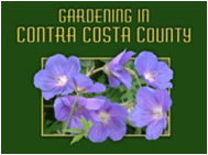 Gardening in Contra Costa County